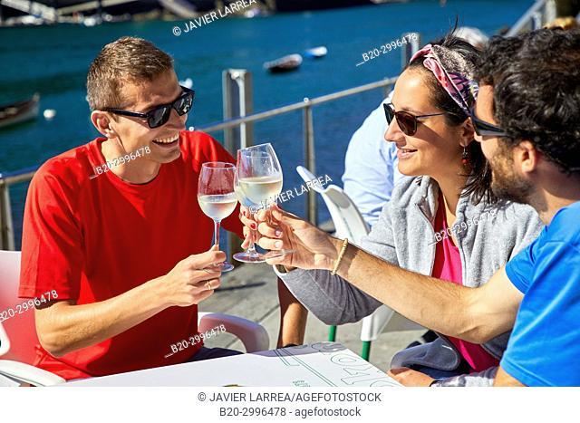 Guide with tourists having a wine, Txakoli, Plaza Santiago, Pasai Donibane, Pasajes de San Juan, Gipuzkoa, Basque Country, Spain, Europe