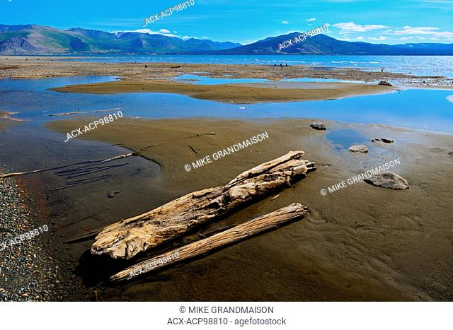 Kluane Lake and driftwood Kluane National Park Yukon Canada