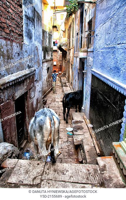 narrow street of Varanasi, India, Asia
