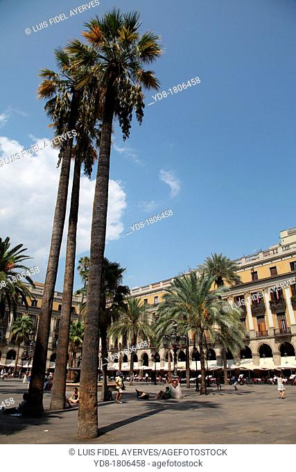 Partial view of the Plaza Real, Barcelona, Catalonia, Spain, Europe