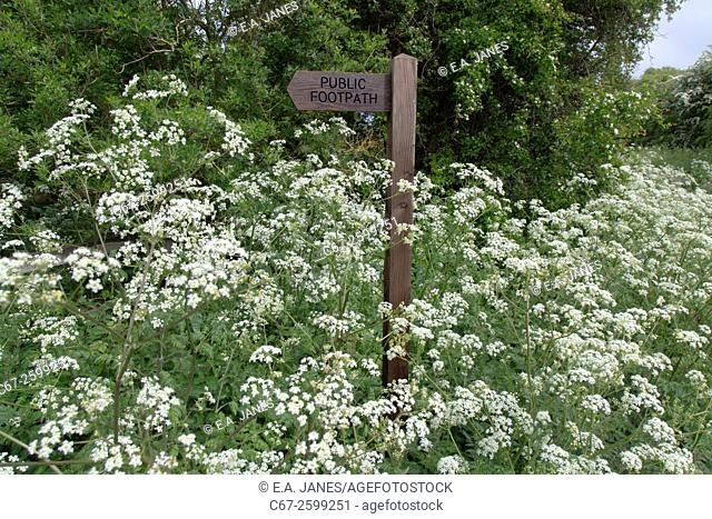 Footpath sign at Ringstead Norfolk