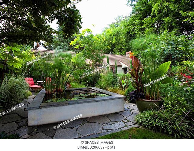 Landscaped Garden With Koi Pond