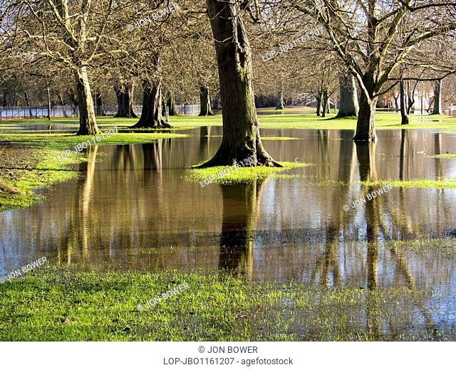 England, Oxfordshire, Oxford. The flooded Thames spills over onto Christ Church College Meadows in Oxford