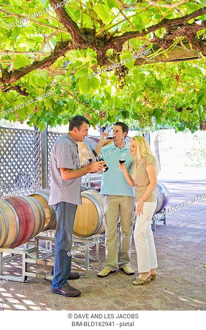Caucasian friends tasting wine in vineyard