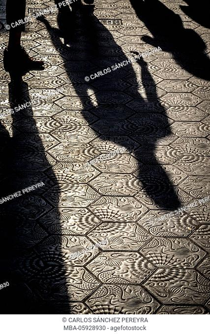 Escofet pavement with marine motifs dessigned by Gaudí, nowadays covers the sidewalks of the Passeig de Gràcia avenue. Barcelona. Spain