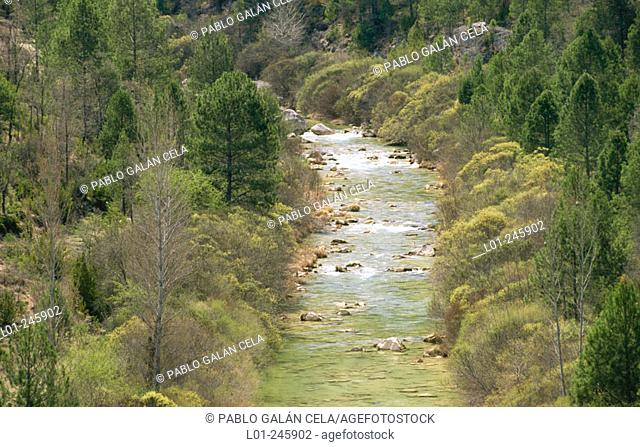 Alto Tajo Natural Park. Guadalajara province. Spain