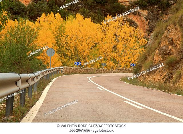 Road in Rincón de Ademuz in autumn. Valencia. Spain