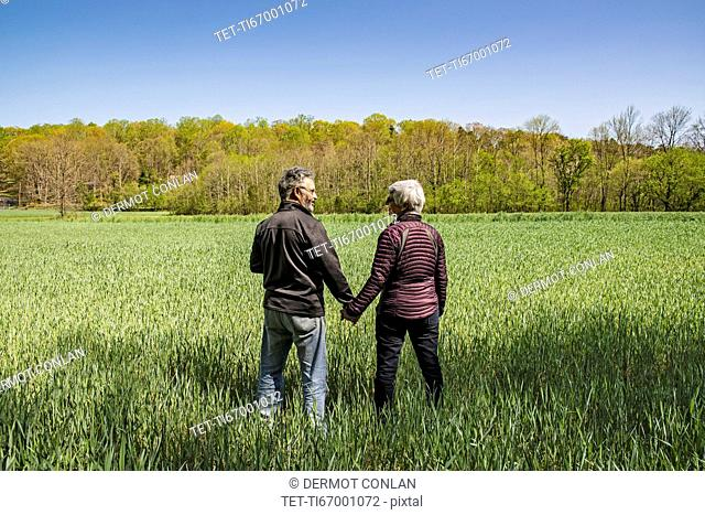 Mature couple holding hands in field