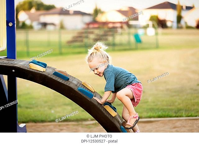 A young girl with blond hair playing in a playground and climbing up a rock ladder on a warm fall day; Spruce Grove, Alberta, Canada