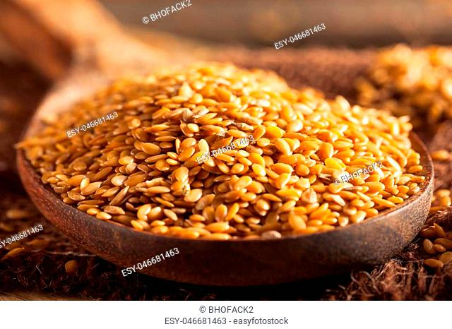 Raw Organic Golden Flax Seeds in a Spoon