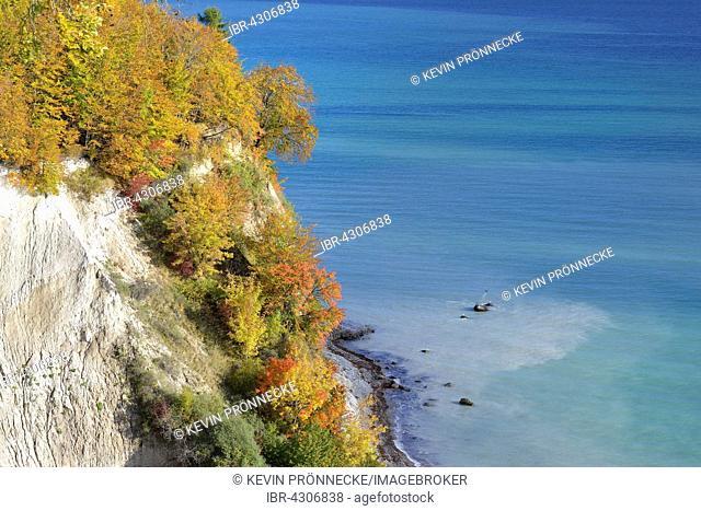 Chalk coast in autumn, coloured trees on cliffs, Baltic Sea, Sassnitz, Rügen, Mecklenburg-Western Pomerania