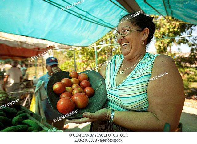 Vendor at the fruit and vegetable market, Santa Clara, Villa Clara Province, Cuba, West Indies, Central America