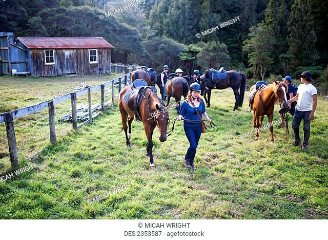 Horseback riding at Blue Duck lodge, a working New Zealand farm in the Whanganui National park; Whakahoro, New Zealand