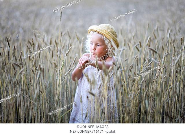 Girl in a field of corn, Sweden