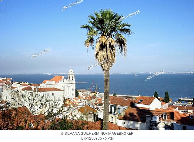 View over the Alfama district with the church of Santo Estevao, Lisbon, Portugal, Europe