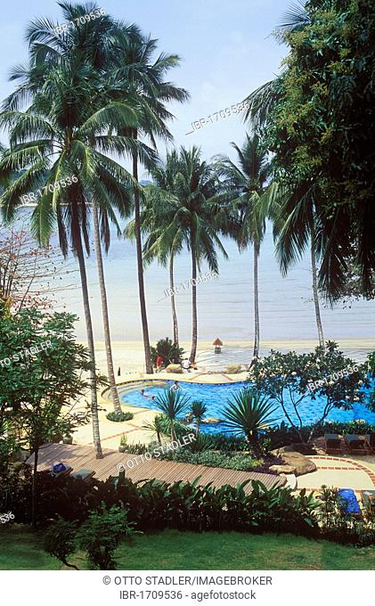 Swimming pool under coconut palm trees, Sea View Resort, Kai Bae Beach, Koh Chang Island, Trat, Thailand, Southeast Asia