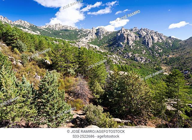 Pedriza Posterior. Regional Parck. Manzanares el Real. Madrid. Spain. Europe