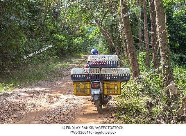 Delivery motorcycle travelling on a country road, Phu Quoc, Vietnam, Asia