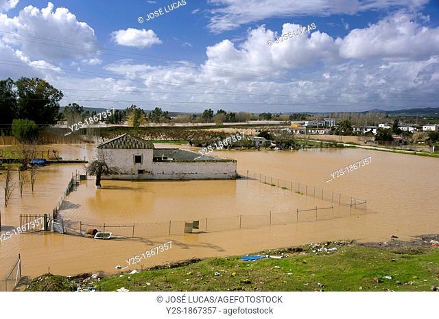 Guadalquivir river floods, Andujar, Jaen-province, Spain