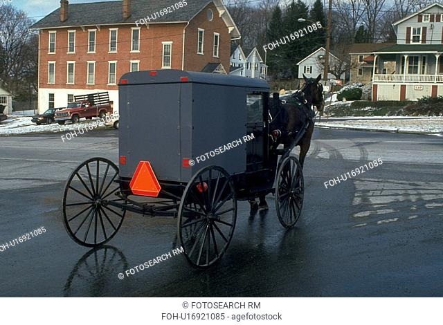 carriage, wagon, pennsylvania, lancaster, country, amish
