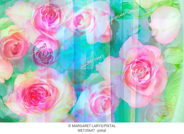 Pretty abstract floral background with roses