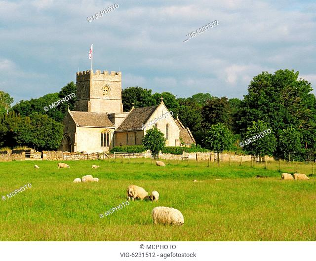 A photography of a field with sheep - 15/06/2008
