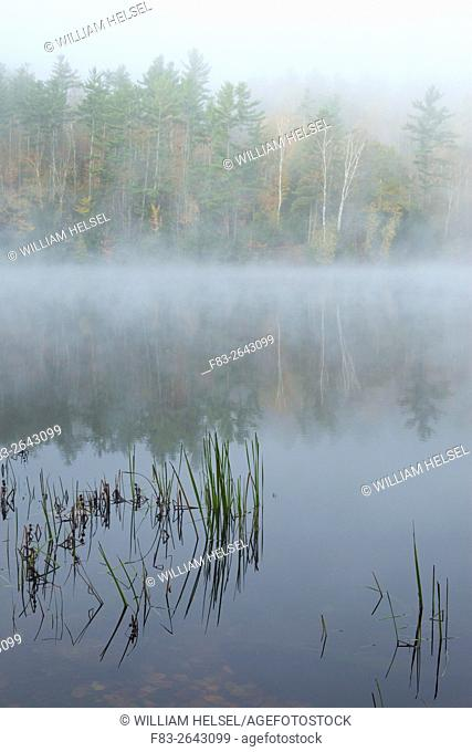 Lake with fog near Woodsville, New Hampshire, USA, October