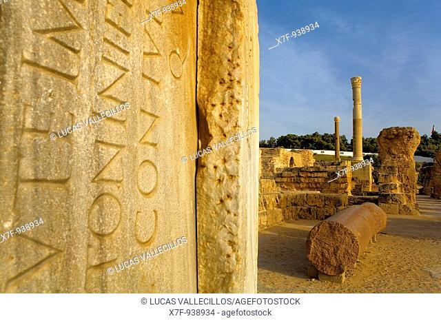Tunez: Carthage  The Antonine Baths built on the 2nd century A D