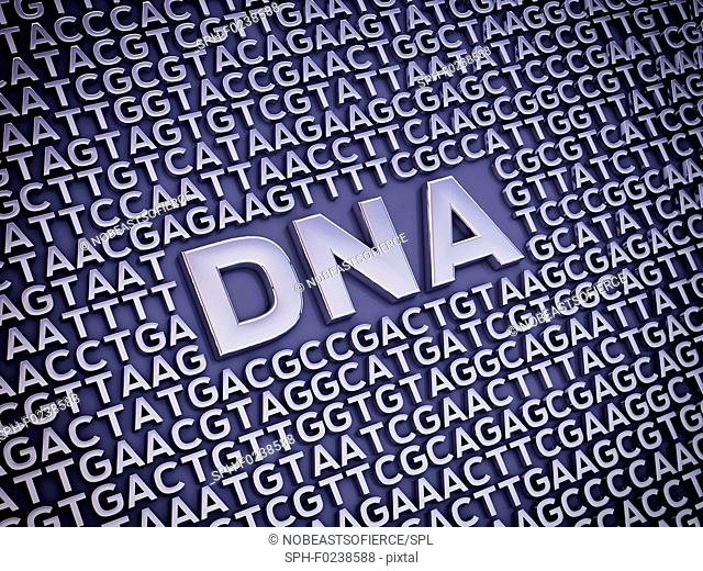 Genetic code, conceptual illustration