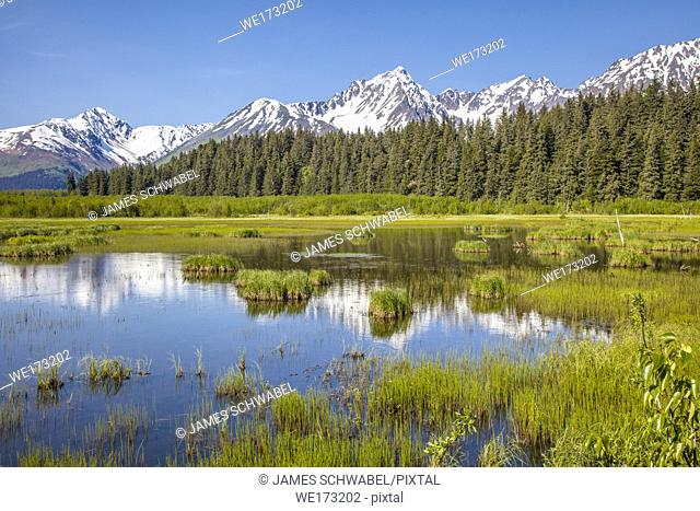 Snow capped mountains reflecting in ponds in the town of Seward on the Kenai Peninsula of Alaska