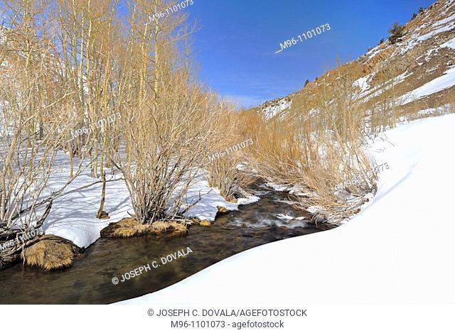 Running creek through snow pack, John Muir Wilderness Area, California, USA