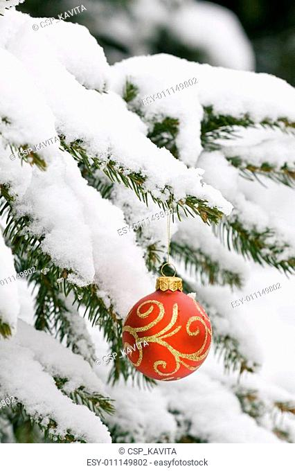 Christmas decorating bulbs and a snowy branch