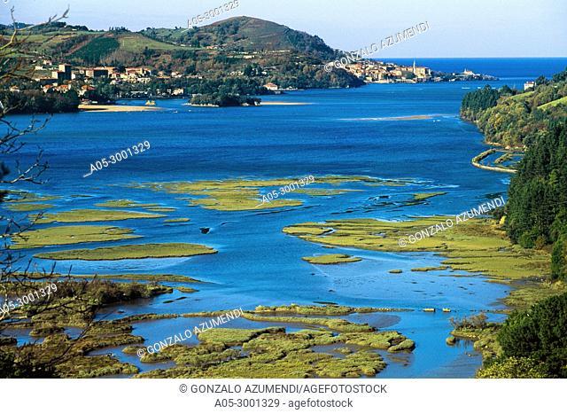 Urdaibai Estuary. In the background Mundaka. Urdaibai Biosphere Reserve. Biscay, Basque Country, Spain