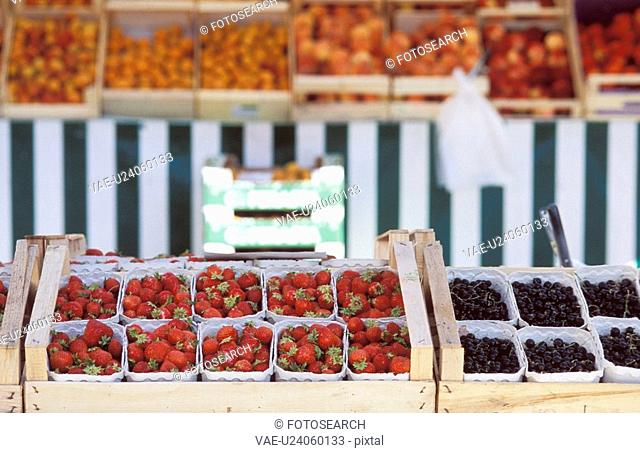 fru, berries, dornbirn, calf, blueberries, fruit, austria