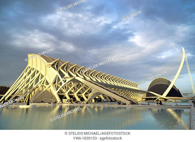 The City of Arts and Science, designed by Santiago Calatrava,Valencia,Spain