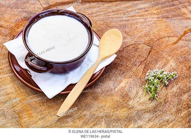 Bowl of organic goat yogurt with wooden spoon