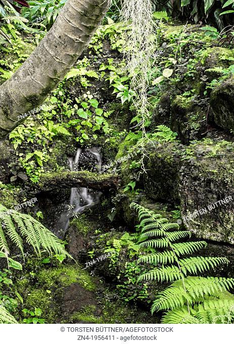 Artificial Waterfall in Botanical Garden Erfurt. Germany