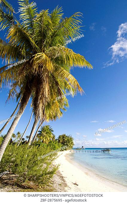 Fakarawa, Tuamotu Archipelago, French Polynesia