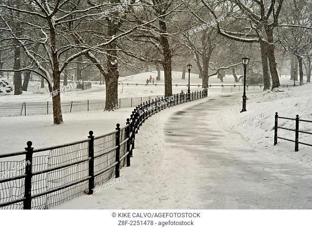 Snow blizzard in Central Park. Manhattan. New York City
