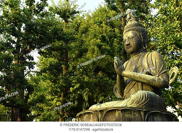 Buddha statue at the Senso-ji temple in Asakusa, Tokyo, Japan, Asia