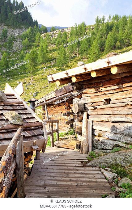 Fiechtalm' (alp) in the Ultental (valley)
