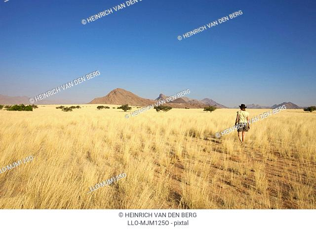 Woman walking through grassland in Marienflusstal area, Kaokoland, Namibia