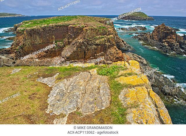 Cliffs along the rocky shoreline of the Atlantic Ocean, Elliston, Newfoundland & Labrador, Canada
