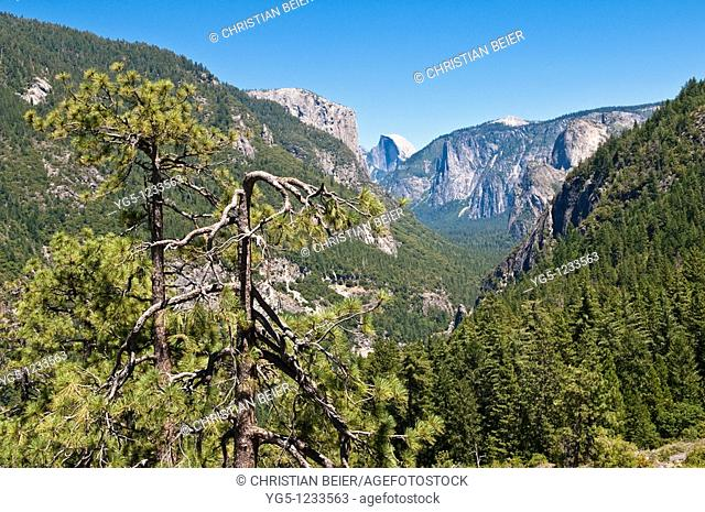Tunnel View Point, Yosemite National Park, California, USA