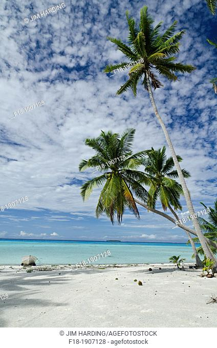 Beach and lagoon on Palmerston Atoll, Cook Islands, South Pacific