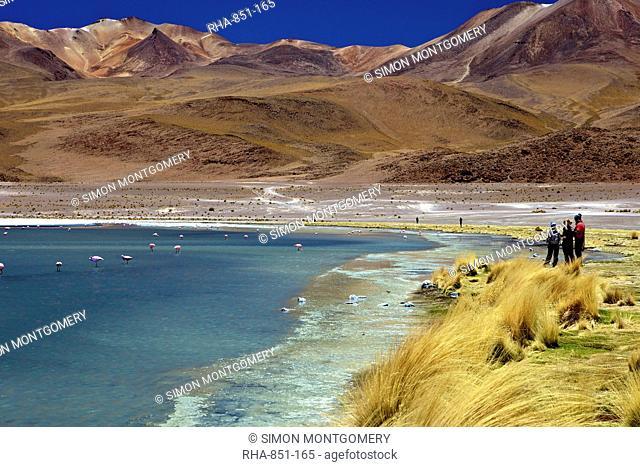 Laguna Canapa, South Lipez, Southwest Highlands, Bolivia, South America