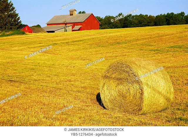 Country Scene, Hudson Valley