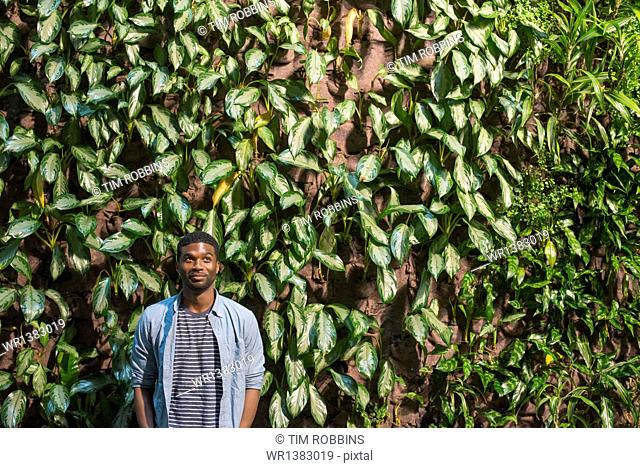 A man standing in front of a wall covered in climbing plants and ivy