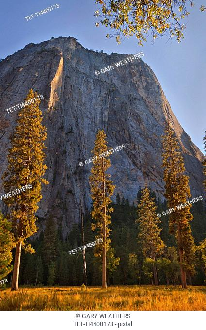 USA, California, Yosemite Valley in autumn