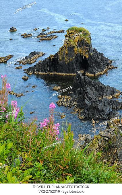 Aerocrombie Point Kodiak Island, Alaska , U. S. A